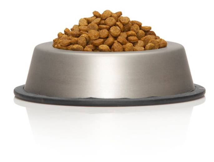 Nature's Recipe Healthy Skin Vegetarian Dry Dog Food | PetFoodDirect