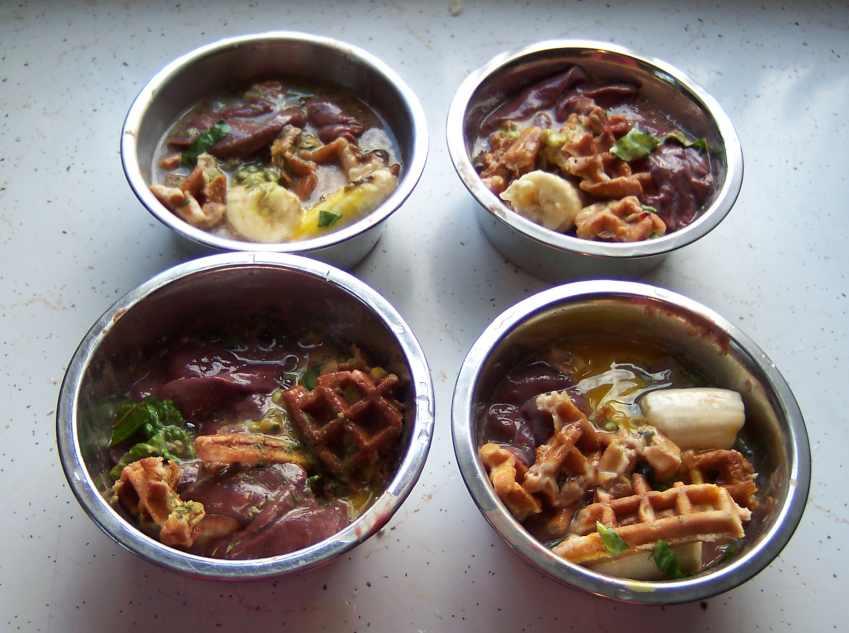 317 best diy dog food treats images on pinterest cooking food
