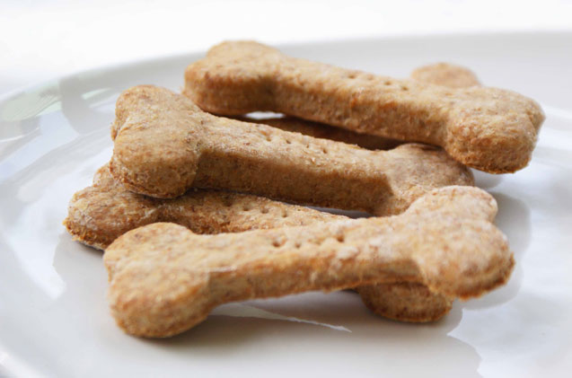 Easy-Peasy Peanut Butter Dog Treats Recipe